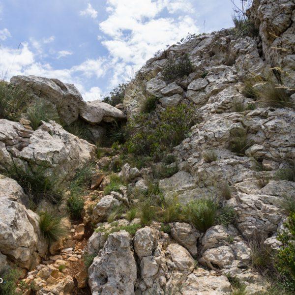 Aufstieg Lloma Llarga zum Gipfel Cau