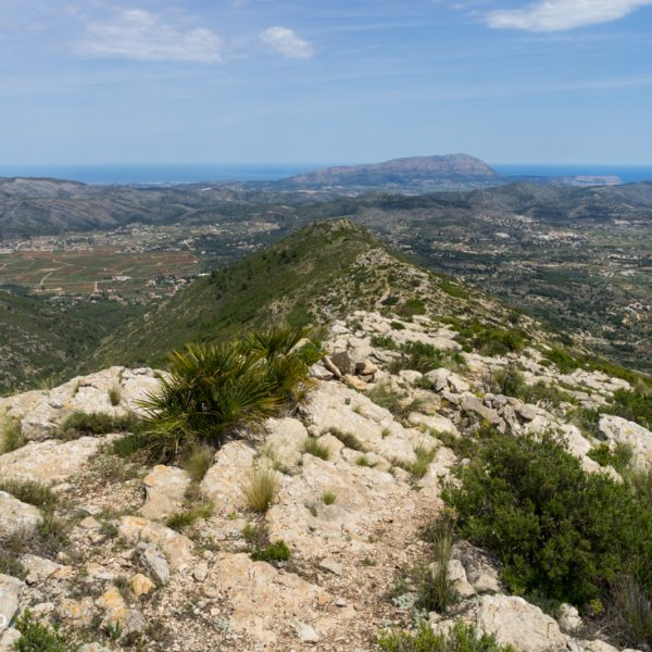 Bergkamm der Lloma Llarga, Sierra de la Solana