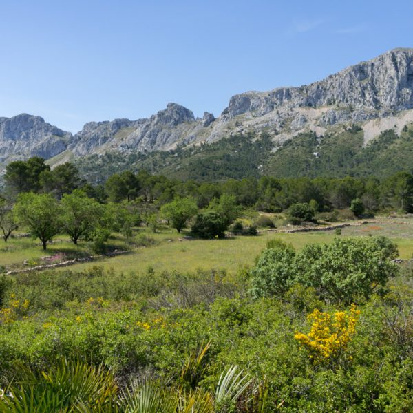 Bergkette Sierra de Bèrnia