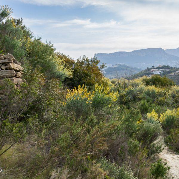La Rosina mit Blick in die Sierra de Oltà
