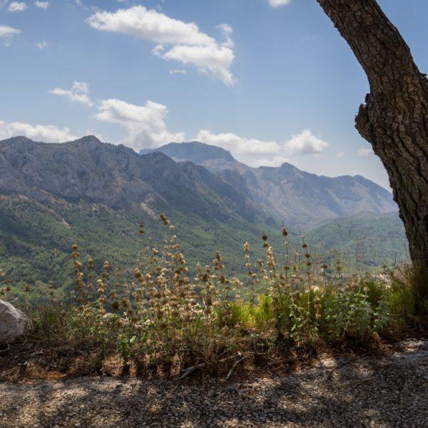 Aufstieg in die Sierra del Carrascal de Parcent, Ausblick in die Sierra del Ferrer