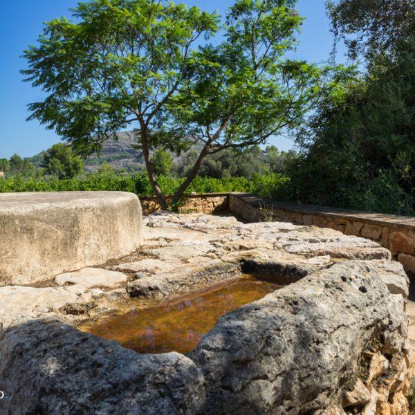 Wasserstelle Camí dels Pous, Wanderung Carrascal de Parcent