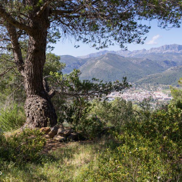 Serra del Castell de la Solana, Blick in die Serra de Bèrnia