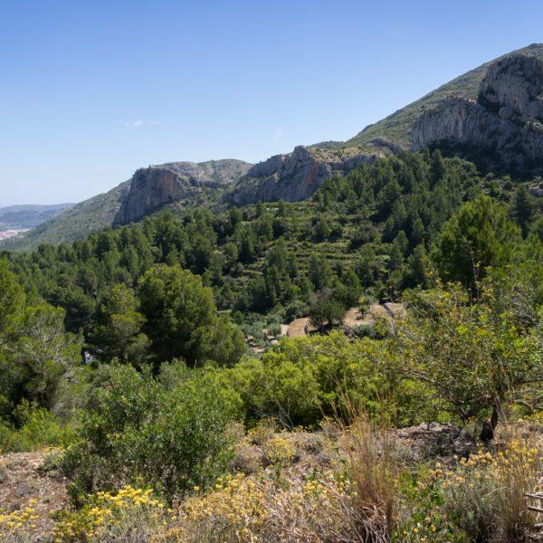 Felsen auf der Schattenseite der Serra del Castell de la Solana, l´Ocaive