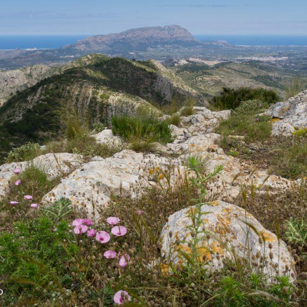 Castell d´Aixa, Blick auf Muntanya Gran und Montgó