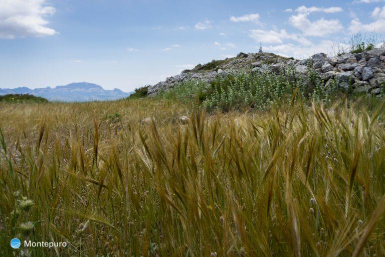 Castell d´Aixa, cima de la Sierra del Castell de la Solana