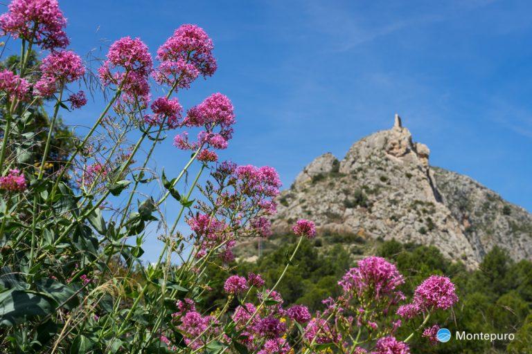 Castellet de Calp con ruinas de atalaya