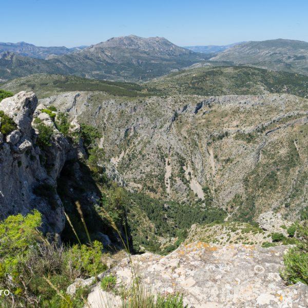 panorama desde la cima de Cocoll
