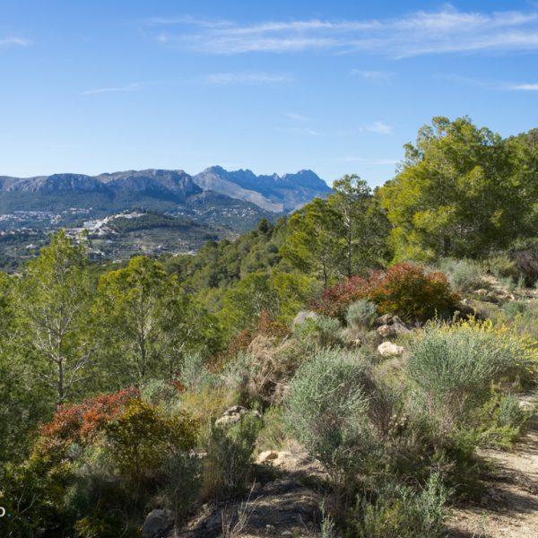 Panorama Wandern bei Calpe und Blick in die Sierra de Oltà