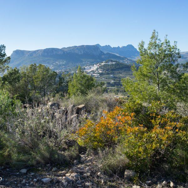 Wandern bei Calpe und Blick in die Sierra de Oltà