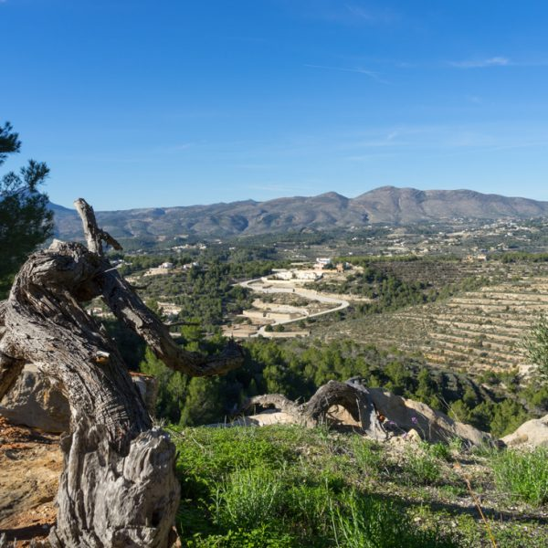 La Rosina mit Blick auf die Lloma Llarga