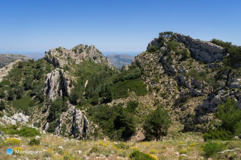 Cresta de la Sierra del Ferrer