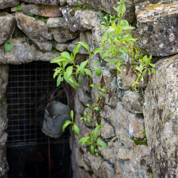 Font de la Mata, Eingang zum Brunnen aus Stein