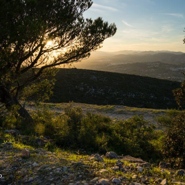 Puig de la Llorença, Cumbre del Sol Panorama