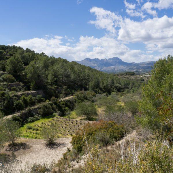 Sierra de Pedramala