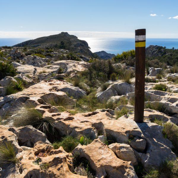 en la meseta de la Sierra de Olta, piedra caliza Lapiaz