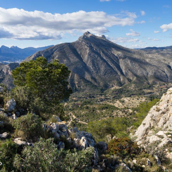 cima sur La Mola, Sierra de Oltà, Sierra de Bernia al fondo
