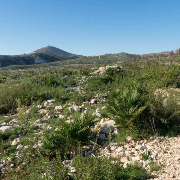 Hügel im Naturpark Granadella und Cumbre del Sol
