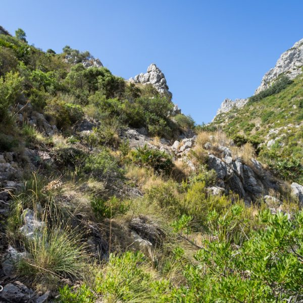 Barranco Negre, Kalksteinfelsen