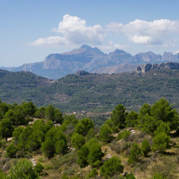 Ausblick von Penya Talai auf Puig Campana