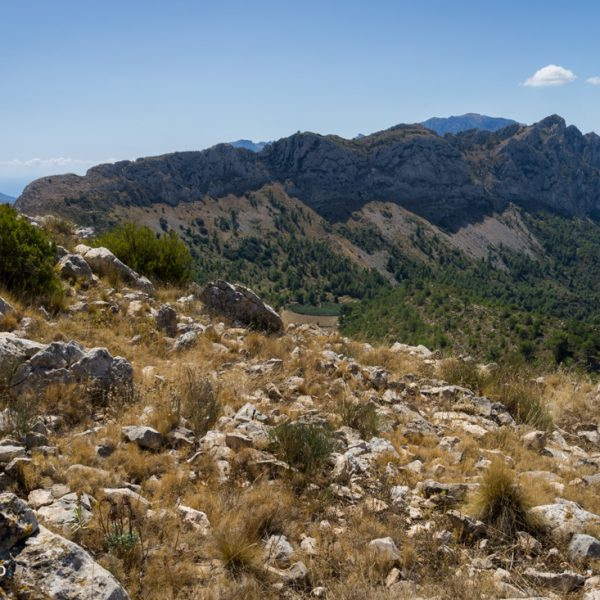 Penya Talai, Blick in die Sierra del Ferrer
