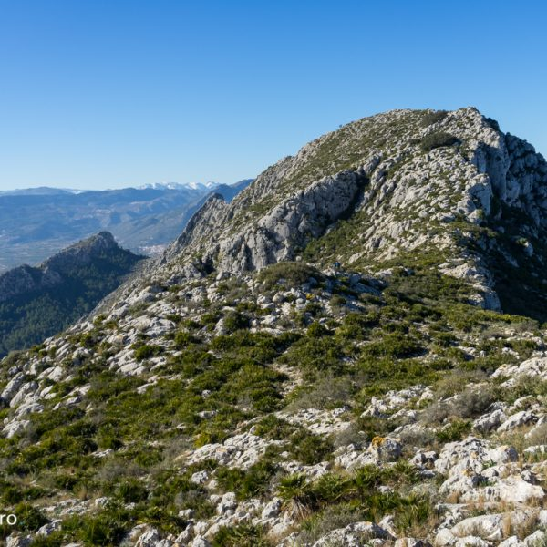 Sierra de Segària, vistas de la cima
