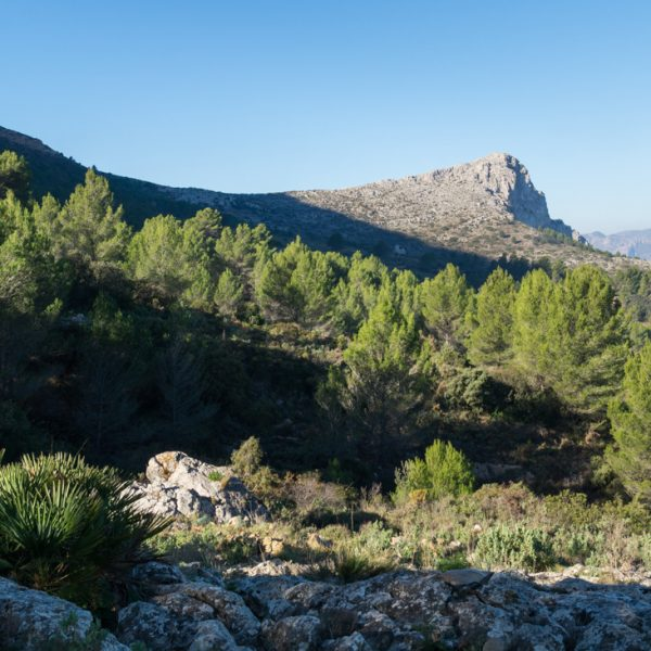 La Orenga (Peñón de l´Orenga) Bernia
