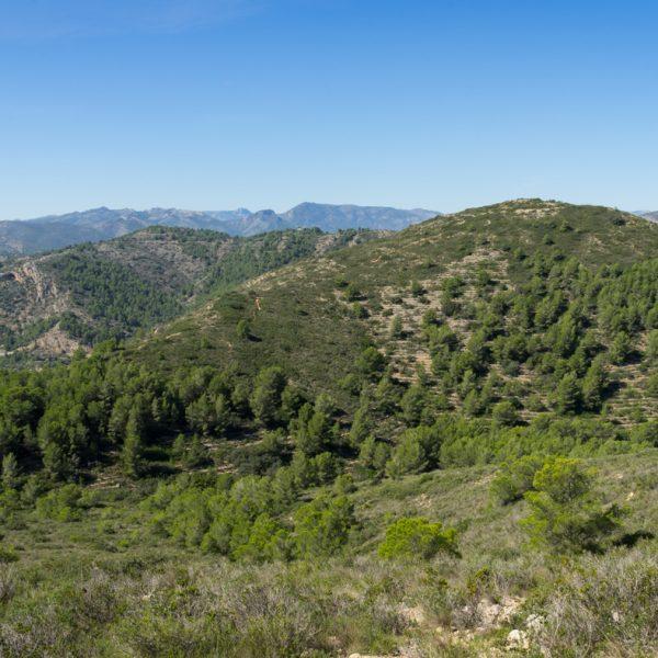 cima Serrellars, vista a Tossal de Moro