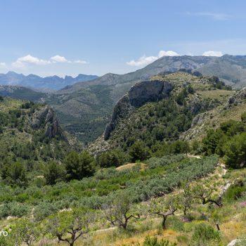 Panorama de Sa Muntanya y Sierra de Aixortà