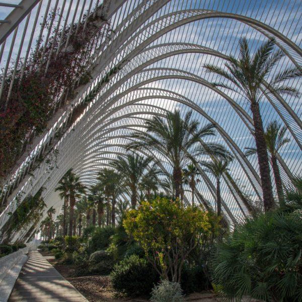 Garten Umbracle, Stadt der Künste und der Wissenschaften in Valencia