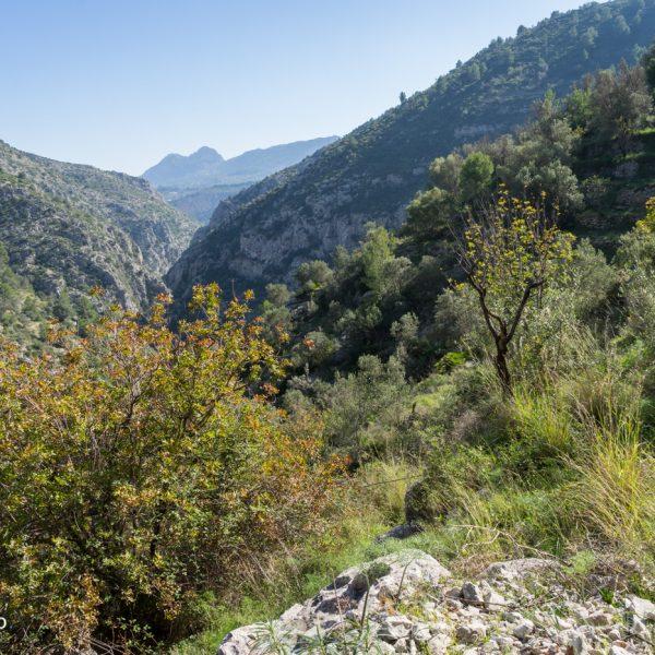 Blick in den Barranco del Infierno, Aufstieg an der Sierra de Carrasca nach Juvees de Dalt